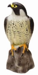 Falcon Decoy Bird Repeller