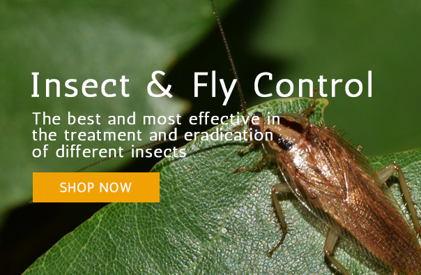 Insect Control Promo