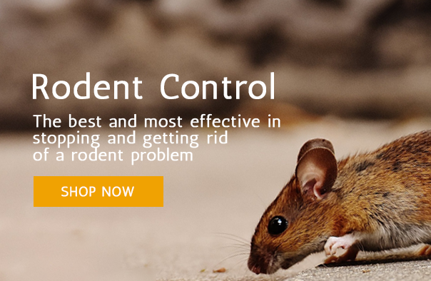 Rodent Control Promo